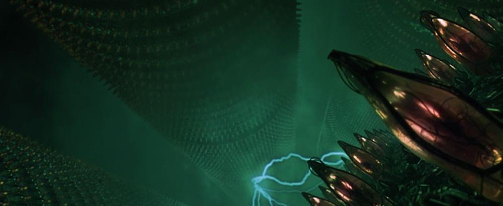 Matrix-cocoons